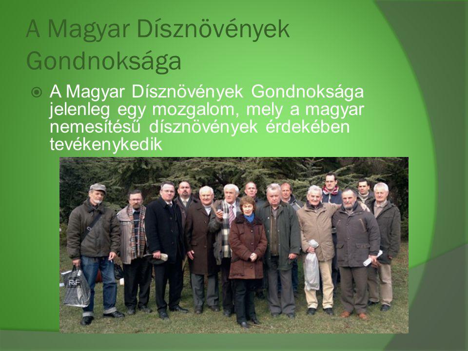 A Magyar Dísznövények Gondnoksága  A Magyar Dísznövények Gondnoksága jelenleg egy mozgalom, mely a magyar nemesítésű dísznövények érdekében tevékenyk