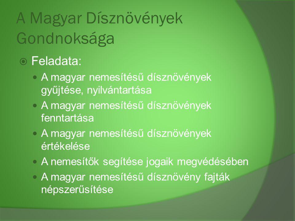A Magyar Dísznövények Gondnoksága  Feladata: A magyar nemesítésű dísznövények gyűjtése, nyilvántartása A magyar nemesítésű dísznövények fenntartása A
