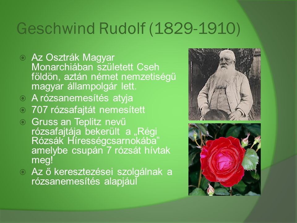 Geschwind Rudolf (1829-1910)  Az Osztrák Magyar Monarchiában született Cseh földön, aztán német nemzetiségű magyar állampolgár lett.  A rózsanemesít