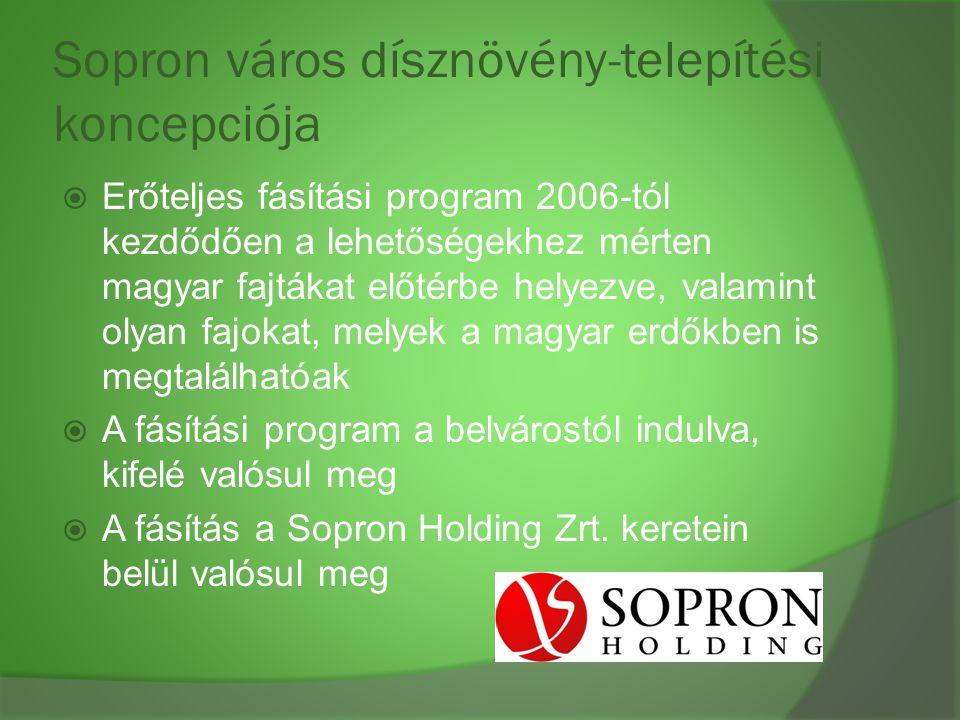 Sopron város dísznövény-telepítési koncepciója  Erőteljes fásítási program 2006-tól kezdődően a lehetőségekhez mérten magyar fajtákat előtérbe helyez