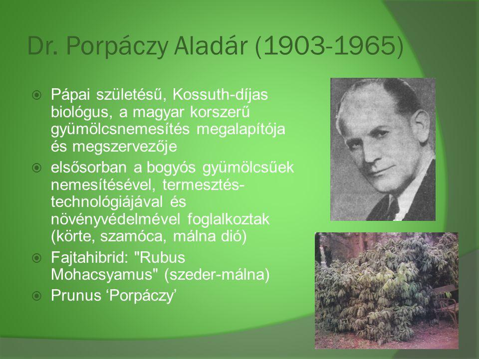 Dr. Porpáczy Aladár (1903-1965)  Pápai születésű, Kossuth-díjas biológus, a magyar korszerű gyümölcsnemesítés megalapítója és megszervezője  elsősor