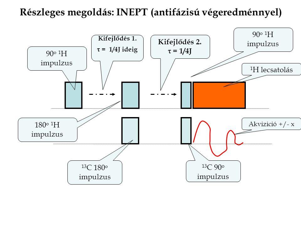 Részleges megoldás: INEPT (antifázisú végeredménnyel) 13 C 90 o impulzus 90 o 1 H impulzus 1 H lecsatolás Kifejlődés 1.