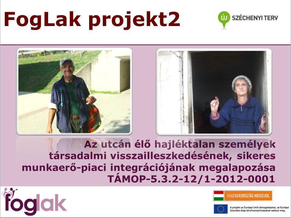 FogLak projekt2 Az utcán élő hajléktalan személyek társadalmi visszailleszkedésének, sikeres munkaerő-piaci integrációjának megalapozása TÁMOP-5.3.2-12/1-2012-0001