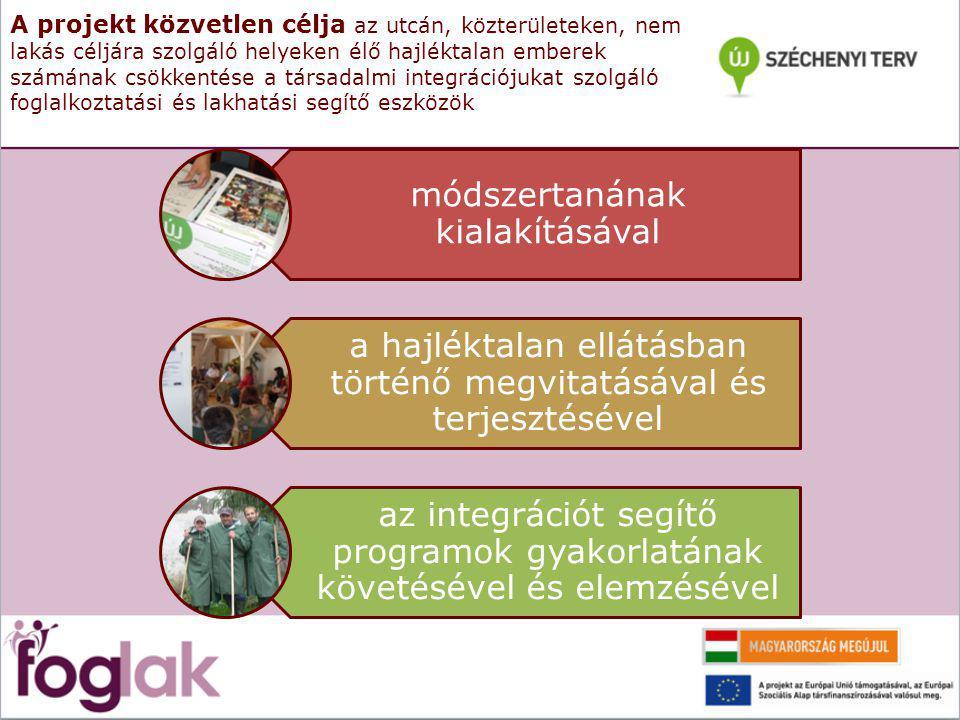 A projekt közvetlen célja az utcán, közterületeken, nem lakás céljára szolgáló helyeken élő hajléktalan emberek számának csökkentése a társadalmi integrációjukat szolgáló foglalkoztatási és lakhatási segítő eszközök módszertanának kialakításával a hajléktalan ellátásban történő megvitatásával és terjesztésével az integrációt segítő programok gyakorlatának követésével és elemzésével
