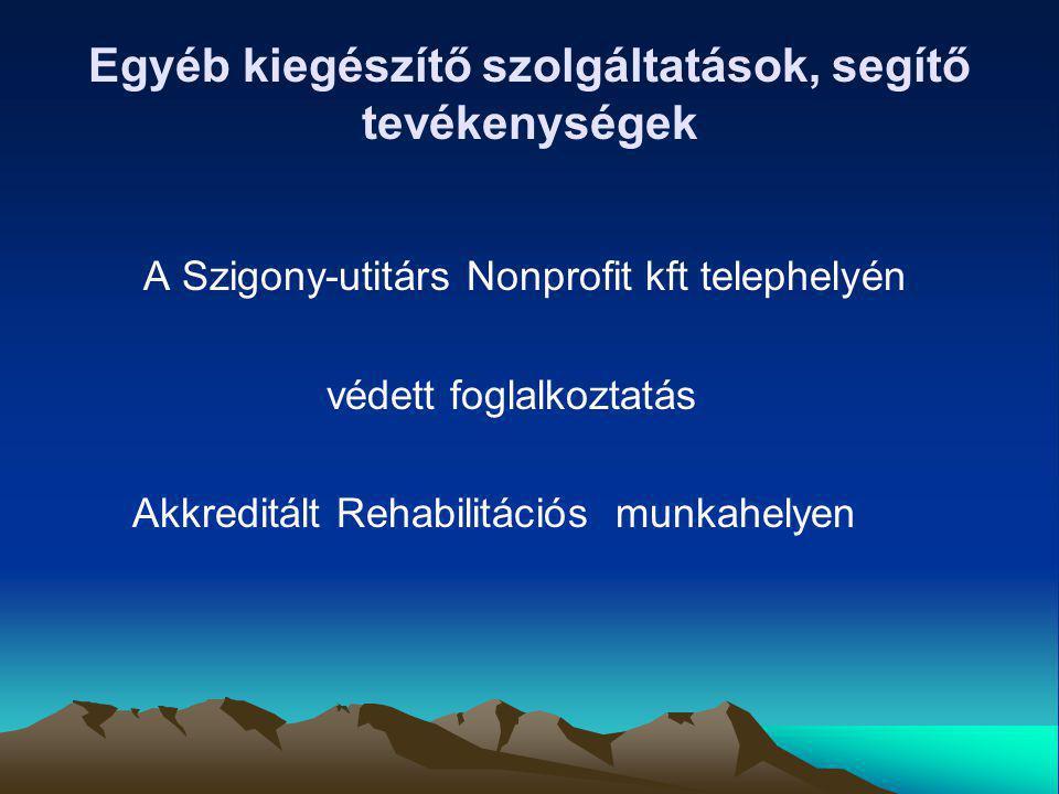 Egyéb kiegészítő szolgáltatások, segítő tevékenységek A Szigony-utitárs Nonprofit kft telephelyén védett foglalkoztatás Akkreditált Rehabilitációs mun