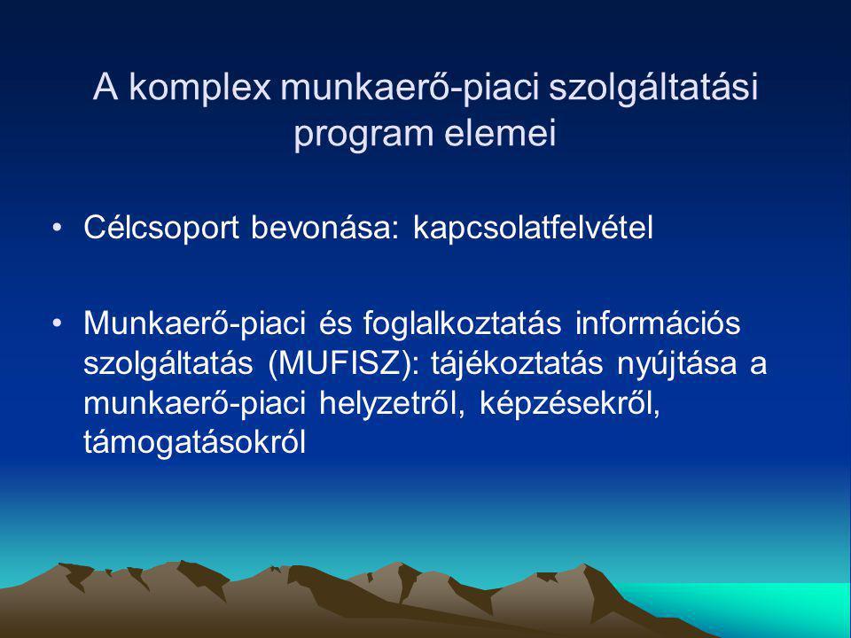 A komplex munkaerő-piaci szolgáltatási program elemei Célcsoport bevonása: kapcsolatfelvétel Munkaerő-piaci és foglalkoztatás információs szolgáltatás