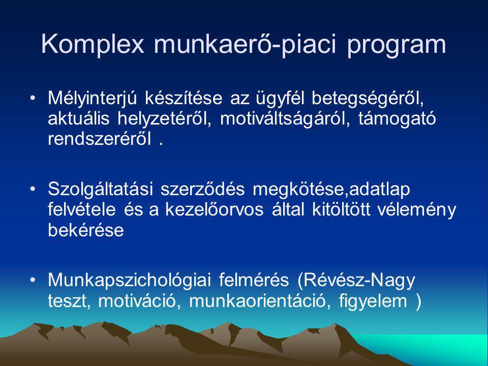 Komplex munkaerő-piaci program Mélyinterjú készítése az ügyfél betegségéről, aktuális helyzetéről, motiváltságáról, támogató rendszeréről. Szolgáltatá