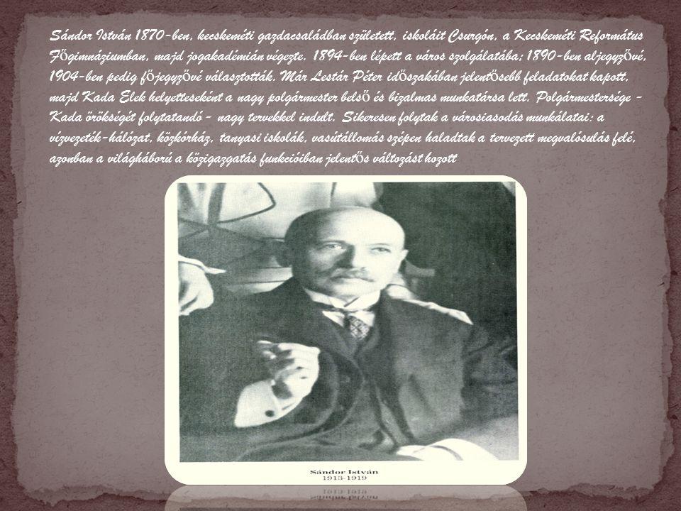 Sándor István 1870-ben, kecskeméti gazdacsaládban született, iskoláit Csurgón, a Kecskeméti Református F ő gimnáziumban, majd jogakadémián végezte.