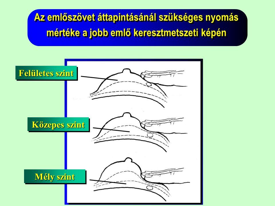 Az emlőszövet áttapintásánál szükséges nyomás mértéke a jobb emlő keresztmetszeti képén Felületes szint Közepes szint Mély szint