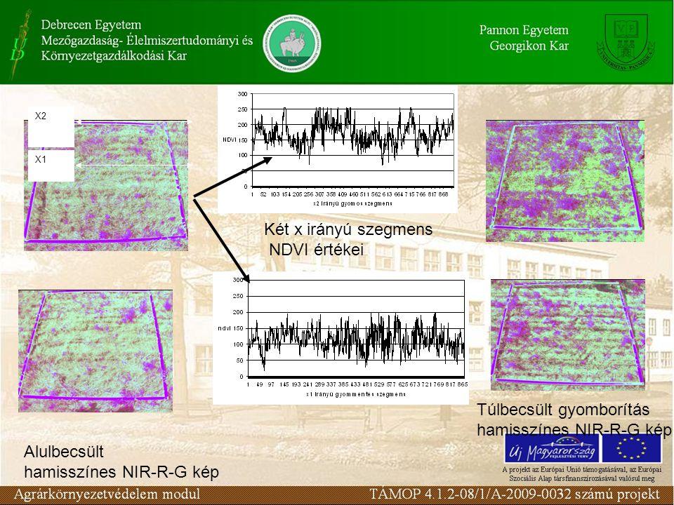 X2 X1 Két x irányú szegmens NDVI értékei Alulbecsült hamisszínes NIR-R-G kép Túlbecsült gyomborítás hamisszínes NIR-R-G kép