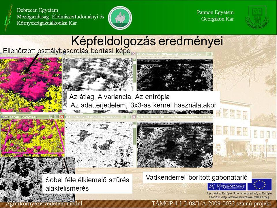 A szántóföldi gyomflóra összetétele, egyes fajok veszélyeztetettsége A szántóföldi gyomflóra összetétele, egyes fajok veszélyeztetettsége (pl.