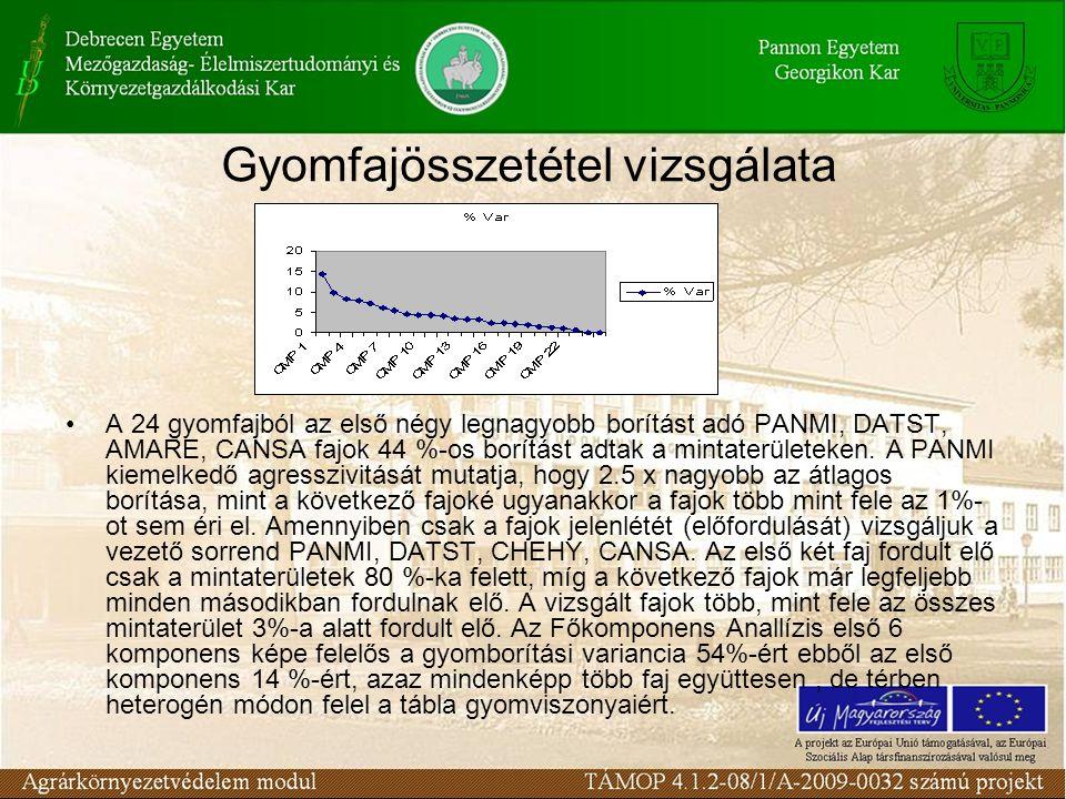 Gyomfajösszetétel vizsgálata A 24 gyomfajból az első négy legnagyobb borítást adó PANMI, DATST, AMARE, CANSA fajok 44 %-os borítást adtak a mintaterül