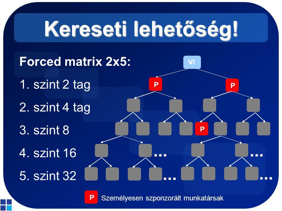 Kereseti lehetőség! Forced matrix 2x5: 1.szint 2 tag 2.szint 4 tag 3.szint 8 4.szint 16 5.szint 32 Vi P P P... P Személyesen szponzorált munkatársak