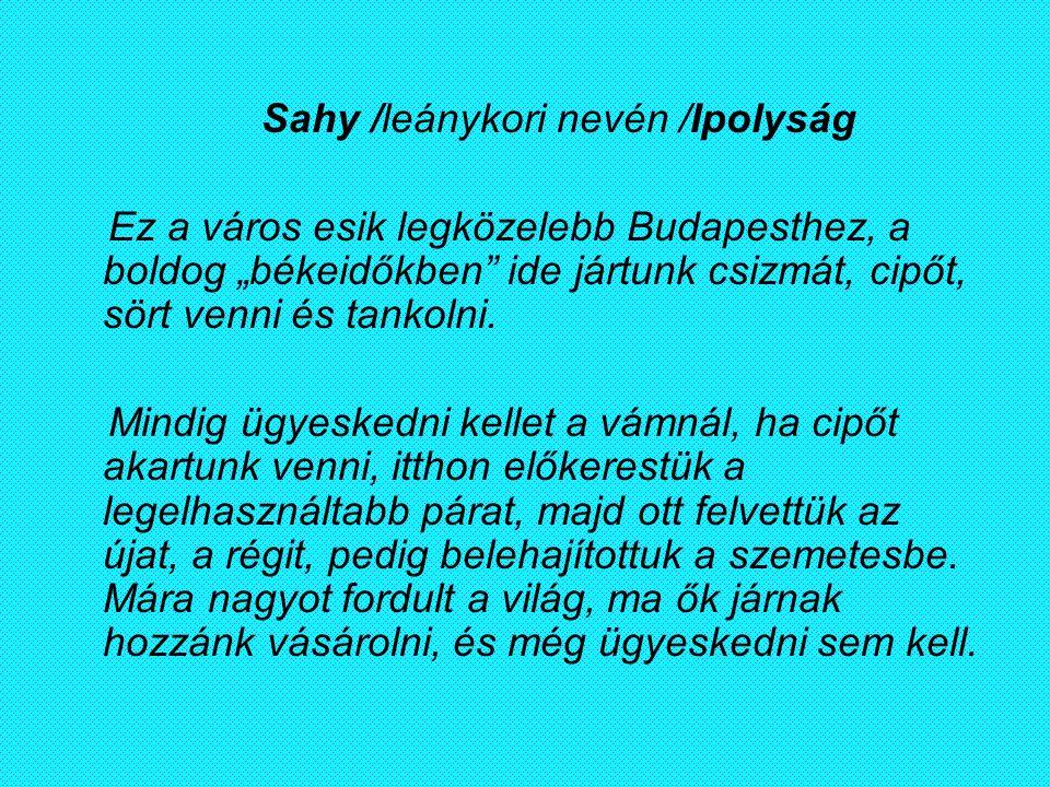 """Sahy /leánykori nevén /Ipolyság Ez a város esik legközelebb Budapesthez, a boldog """"békeidőkben"""" ide jártunk csizmát, cipőt, sört venni és tankolni. Mi"""