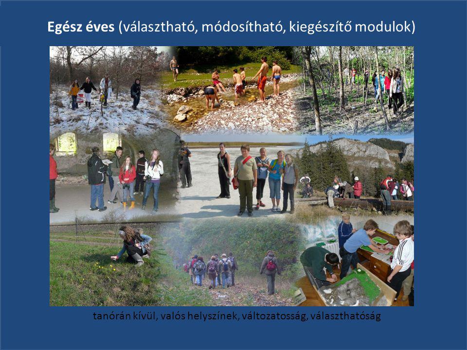 Megyei szint: Megyei szint: Körös-vidéki Tehetségsegítő Tanács Iskolák Ugyanazon programmal, lakóhelyen: Projekt (kutatás-megismerés- bemutatás, környezeti probléma) I.