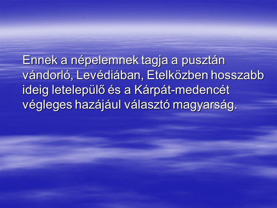 Ennek a népelemnek tagja a pusztán vándorló, Levédiában, Etelközben hosszabb ideig letelepülő és a Kárpát-medencét végleges hazájául választó magyarsá