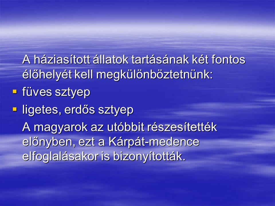 A háziasított állatok tartásának két fontos élőhelyét kell megkülönböztetnünk:  füves sztyep  ligetes, erdős sztyep A magyarok az utóbbit részesítet