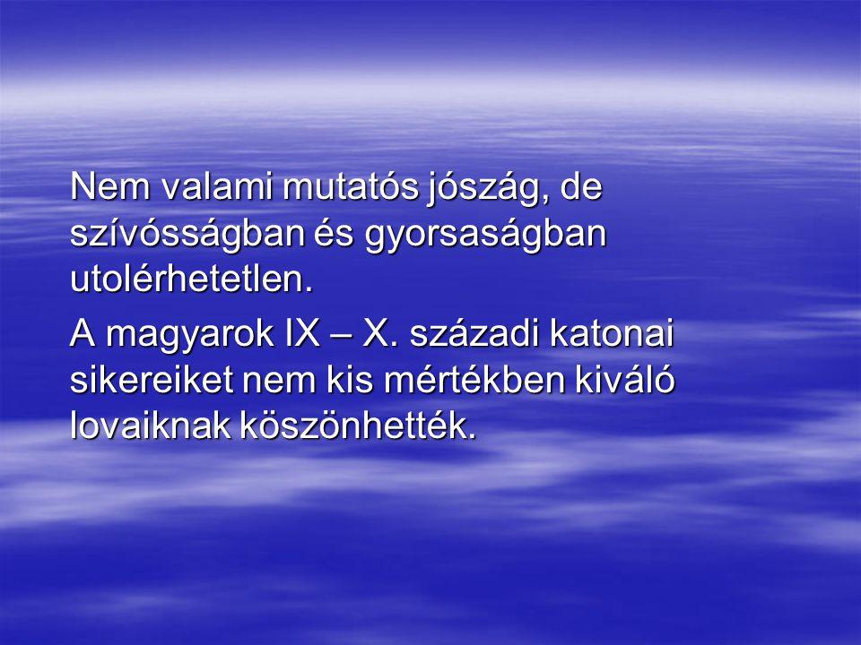 Nem valami mutatós jószág, de szívósságban és gyorsaságban utolérhetetlen. A magyarok IX – X. századi katonai sikereiket nem kis mértékben kiváló lova
