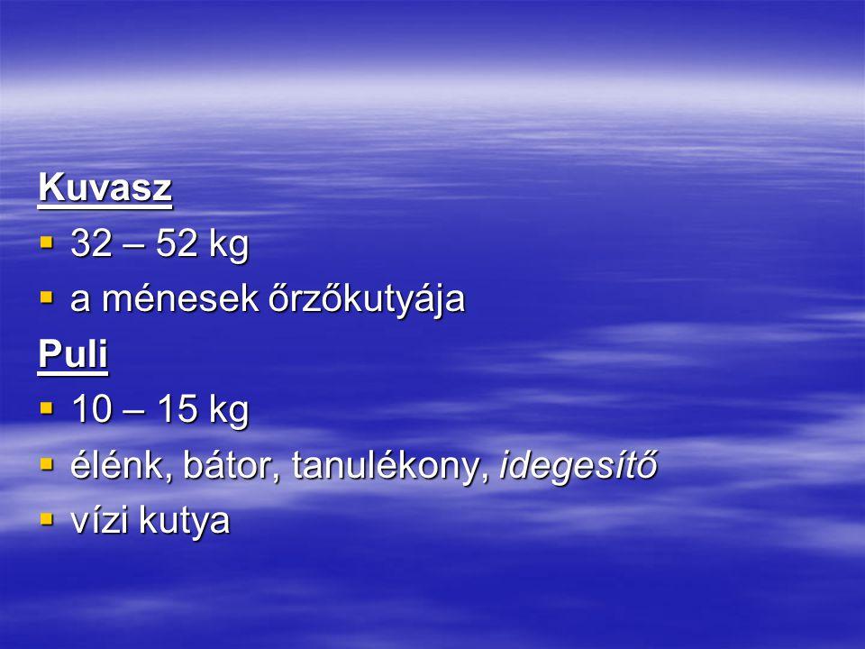 Kuvasz  32 – 52 kg  a ménesek őrzőkutyája Puli  10 – 15 kg  élénk, bátor, tanulékony, idegesítő  vízi kutya