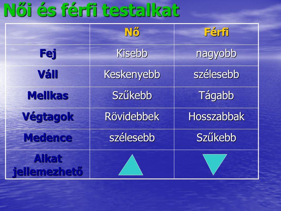Szervezet: szervrendszerek összessége = egyed Szervrendszer: egy életjelenség elvégzésére szorosan együttműködő szervek Szerv: meghatározott működésre csoportosult különböző szövettípusok Szövet: hasonló alakú, azonos származású és azonos működésű sejtek csoportja.