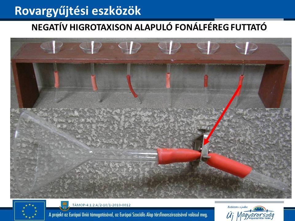 NEGATÍV HIGROTAXISON ALAPULÓ FONÁLFÉREG FUTTATÓ Rovargyűjtési eszközök