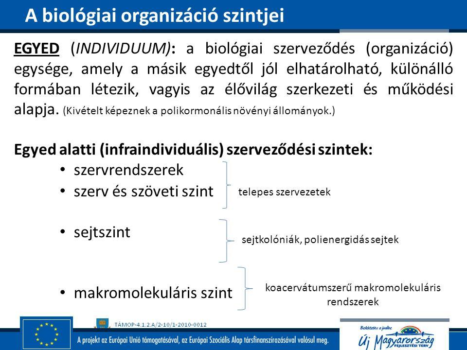 EGYED (INDIVIDUUM): a biológiai szerveződés (organizáció) egysége, amely a másik egyedtől jól elhatárolható, különálló formában létezik, vagyis az élő