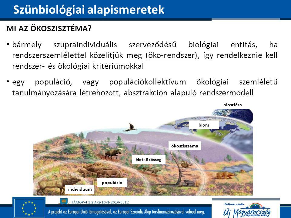 MI AZ ÖKOSZISZTÉMA? bármely szupraindividuális szerveződésű biológiai entitás, ha rendszerszemlélettel közelítjük meg (öko-rendszer), így rendelkeznie