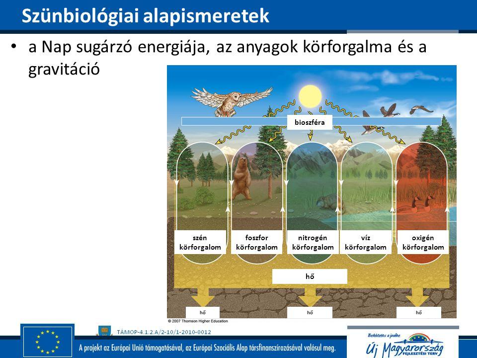 a Nap sugárzó energiája, az anyagok körforgalma és a gravitáció szén körforgalom foszfor körforgalom nitrogén körforgalom víz körforgalom oxigén körfo
