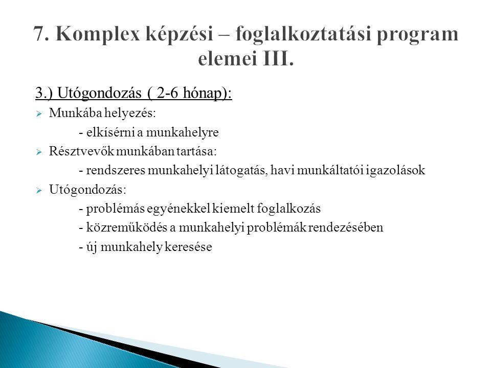 3.) Utógondozás ( 2-6 hónap):  Munkába helyezés: - elkísérni a munkahelyre  Résztvevők munkában tartása: - rendszeres munkahelyi látogatás, havi mun