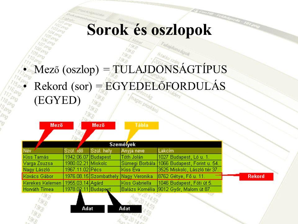Sorok és oszlopok Mez ő (oszlop) = TULAJDONSÁGTÍPUS Rekord (sor) = EGYEDEL Ő FORDULÁS (EGYED)