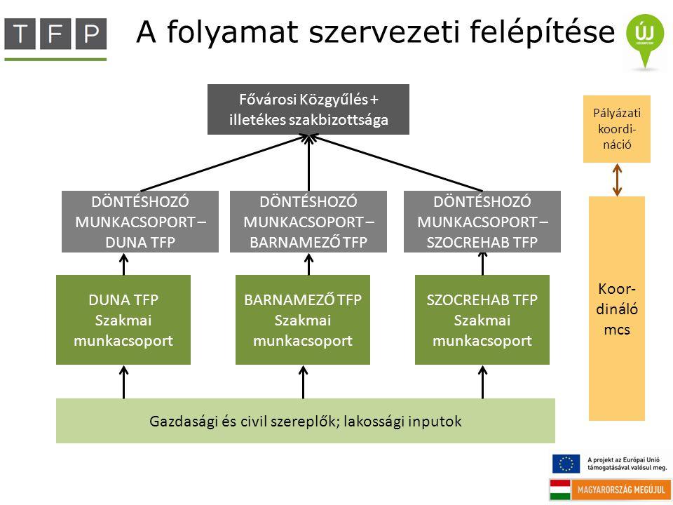 A folyamat szervezeti felépítése Gazdasági és civil szereplők; lakossági inputok DUNA TFP Szakmai munkacsoport BARNAMEZŐ TFP Szakmai munkacsoport SZOC