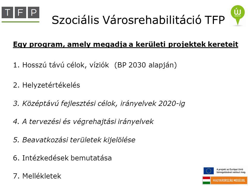 Szociális Városrehabilitáció TFP Egy program, amely megadja a kerületi projektek kereteit 1.Hosszú távú célok, víziók (BP 2030 alapján) 2.Helyzetérték