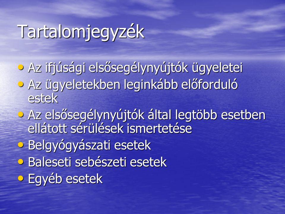 Az ifjúsági elsősegélynyújtók ügyeletei 2013.