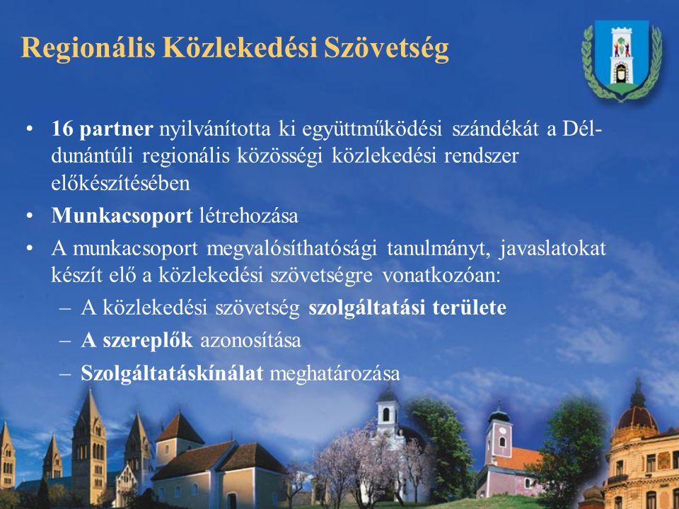 Regionális Közlekedési Szövetség 16 partner nyilvánította ki együttműködési szándékát a Dél- dunántúli regionális közösségi közlekedési rendszer előkészítésében Munkacsoport létrehozása A munkacsoport megvalósíthatósági tanulmányt, javaslatokat készít elő a közlekedési szövetségre vonatkozóan: –A közlekedési szövetség szolgáltatási területe –A szereplők azonosítása –Szolgáltatáskínálat meghatározása