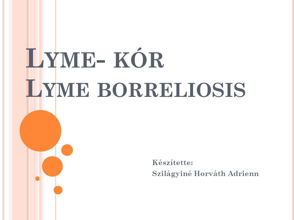 L YME - KÓR L YME BORRELIOSIS Készítette: Szilágyiné Horváth Adrienn