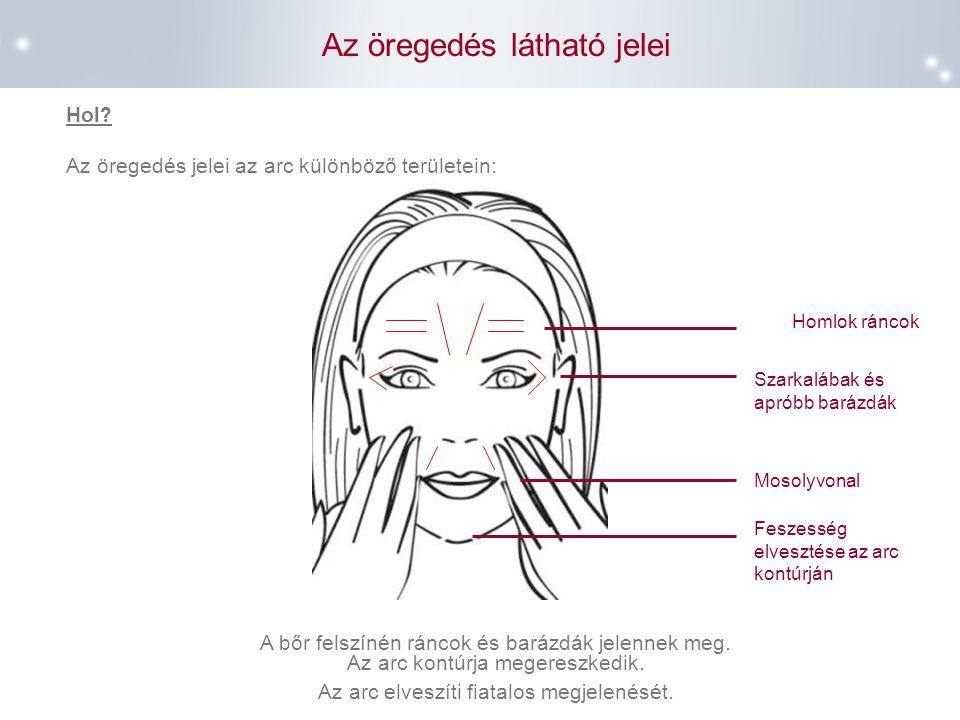 Az öregedés látható jelei Homlok ráncok Mosolyvonal Szarkalábak és apróbb barázdák Hol ? Az öregedés jelei az arc különböző területein : A bőr felszín
