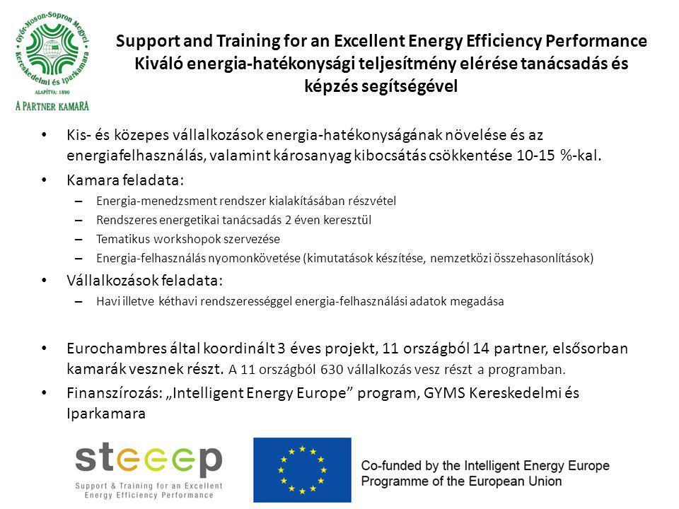 Support and Training for an Excellent Energy Efficiency Performance Kiváló energia-hatékonysági teljesítmény elérése tanácsadás és képzés segítségével Kis- és közepes vállalkozások energia-hatékonyságának növelése és az energiafelhasználás, valamint károsanyag kibocsátás csökkentése 10-15 %-kal.
