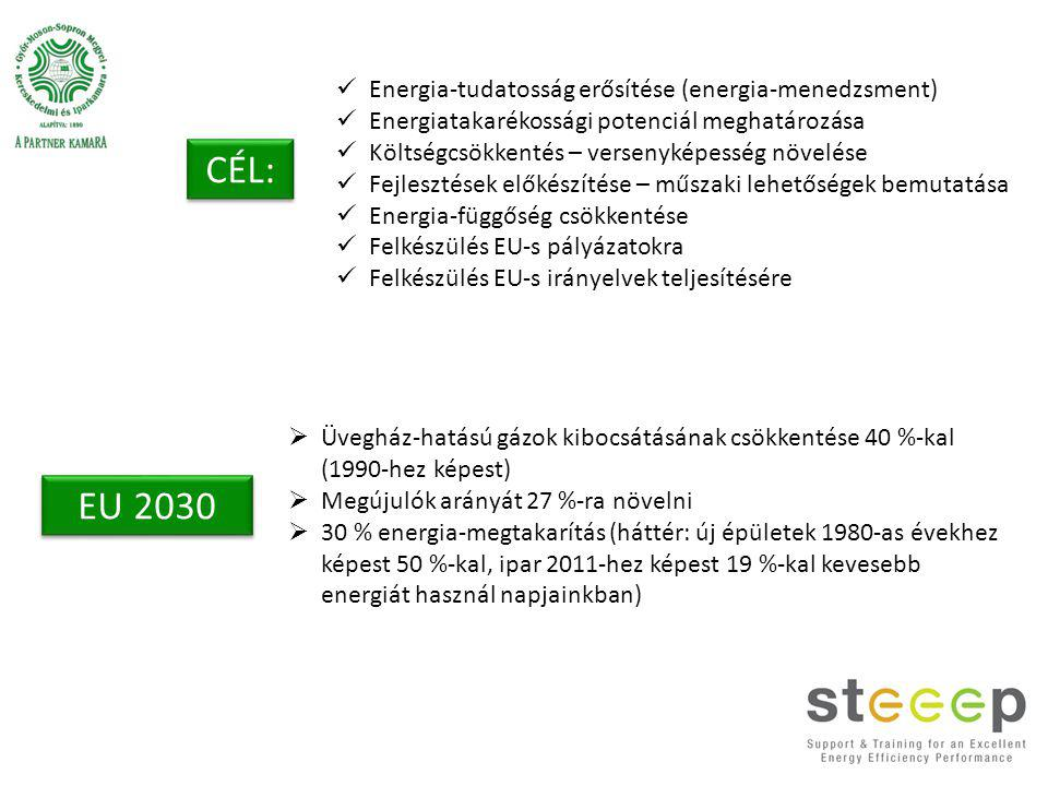 Energia-tudatosság erősítése (energia-menedzsment) Energiatakarékossági potenciál meghatározása Költségcsökkentés – versenyképesség növelése Fejlesztések előkészítése – műszaki lehetőségek bemutatása Energia-függőség csökkentése Felkészülés EU-s pályázatokra Felkészülés EU-s irányelvek teljesítésére CÉL: EU 2030  Üvegház-hatású gázok kibocsátásának csökkentése 40 %-kal (1990-hez képest)  Megújulók arányát 27 %-ra növelni  30 % energia-megtakarítás (háttér: új épületek 1980-as évekhez képest 50 %-kal, ipar 2011-hez képest 19 %-kal kevesebb energiát használ napjainkban)