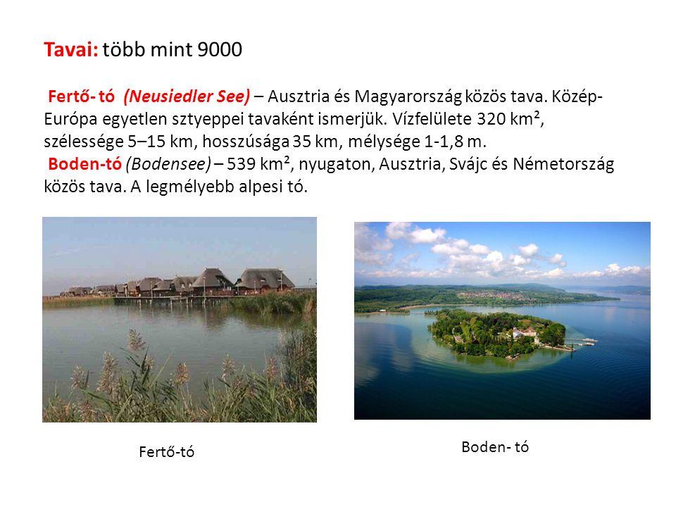 Tavai: több mint 9000 Fertő- tó (Neusiedler See) – Ausztria és Magyarország közös tava. Közép- Európa egyetlen sztyeppei tavaként ismerjük. Vízfelület
