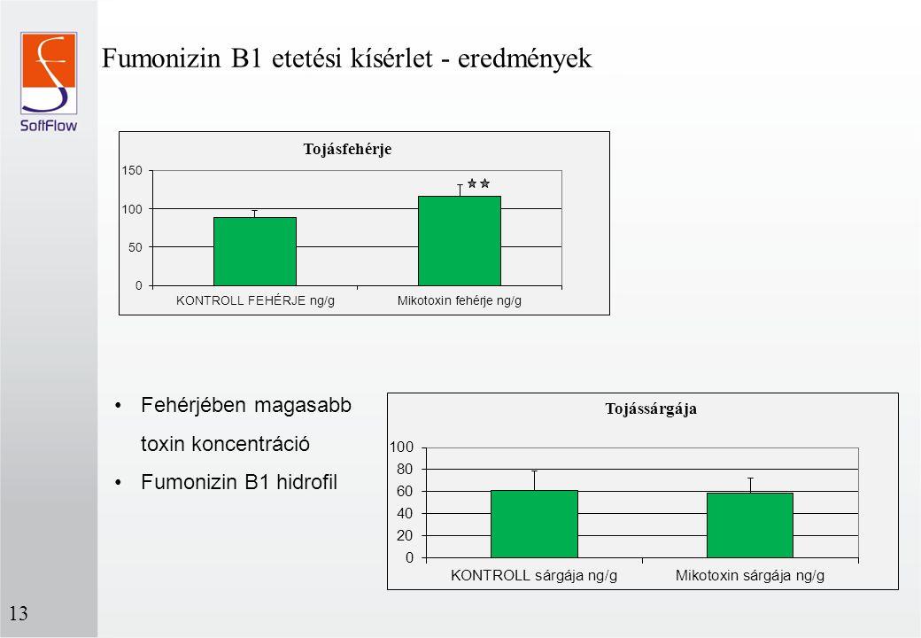 Fumonizin B1 etetési kísérlet - eredmények 13 Fehérjében magasabb toxin koncentráció Fumonizin B1 hidrofil