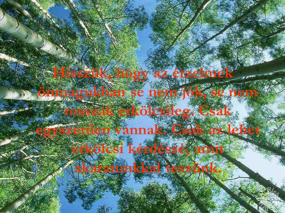 Hisszük, hogy a házastársi szerelem, mint minden szeretet, természeténél fogva apostoli jellegű.