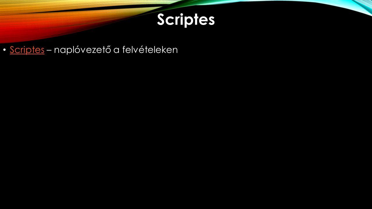 Scriptes Scriptes – naplóvezető a felvételeken Scriptes