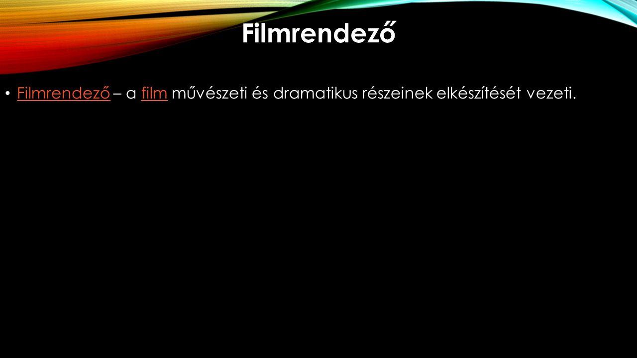 Filmrendező Filmrendező – a film művészeti és dramatikus részeinek elkészítését vezeti. Filmrendezőfilm