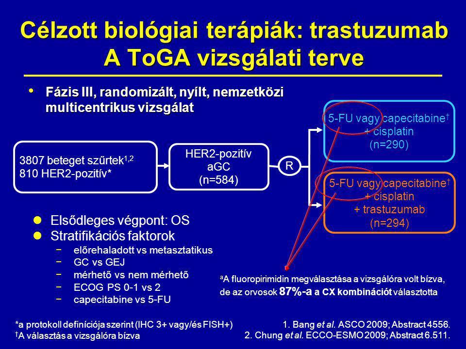 Fázis III, randomizált, nyílt, nemzetközi multicentrikus vizsgálat Fázis III, randomizált, nyílt, nemzetközi multicentrikus vizsgálat HER2-pozitív aGC (n=584) 5-FU vagy capecitabine † + cisplatin (n=290) R *a protokoll definíciója szerint (IHC 3+ vagy/és FISH+) † A választás a vizsgálóra bízva 5-FU vagy capecitabine † + cisplatin + trastuzumab (n=294) Elsődleges végpont: OS Stratifikációs faktorok −előrehaladott vs metasztatikus −GC vs GEJ −mérhető vs nem mérhető −ECOG PS 0-1 vs 2 −capecitabine vs 5-FU 1.