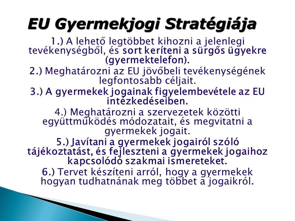 1.) A lehető legtöbbet kihozni a jelenlegi tevékenységből, és sort keríteni a sürgős ügyekre (gyermektelefon). 2.) Meghatározni az EU jövőbeli tevéken