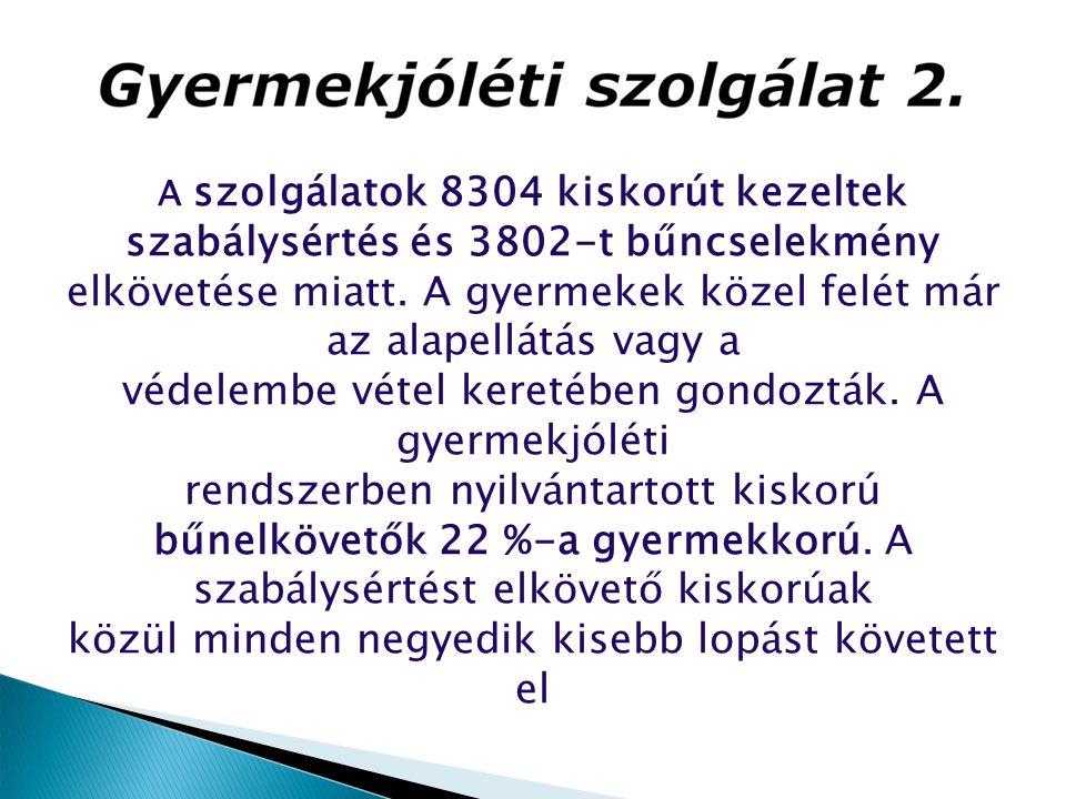 A szolgálatok 8304 kiskorút kezeltek szabálysértés és 3802-t bűncselekmény elkövetése miatt. A gyermekek közel felét már az alapellátás vagy a védelem
