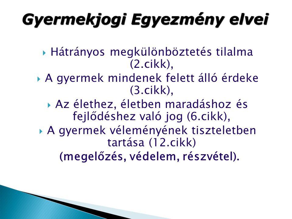 Megyei kormányhivatalok főbb feladatai:  az elsőfokú gyámhatóságok szakmai irányítása és felügyelete, ellenőrzése,  másodfokú döntések meghozatala,  gyermekvédelmi intézmények működésének engedélyezése és tevékenységük ellenőrzése,  gyermek és ifjúságvédelemi koordinátori feladatok.