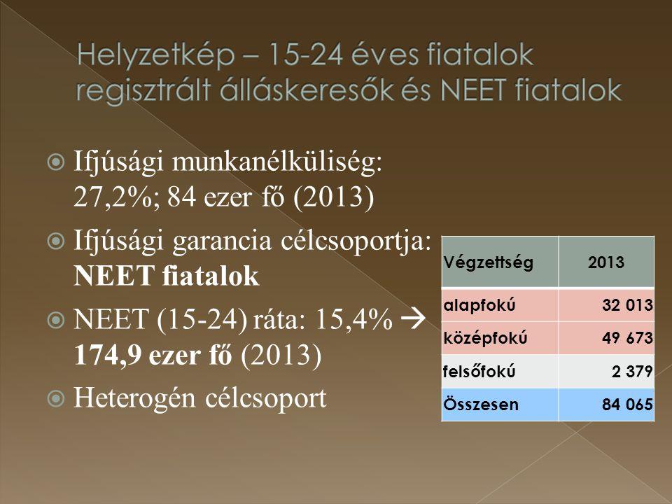  Ifjúsági munkanélküliség: 27,2%; 84 ezer fő (2013)  Ifjúsági garancia célcsoportja: NEET fiatalok  NEET (15-24) ráta: 15,4%  174,9 ezer fő (2013)