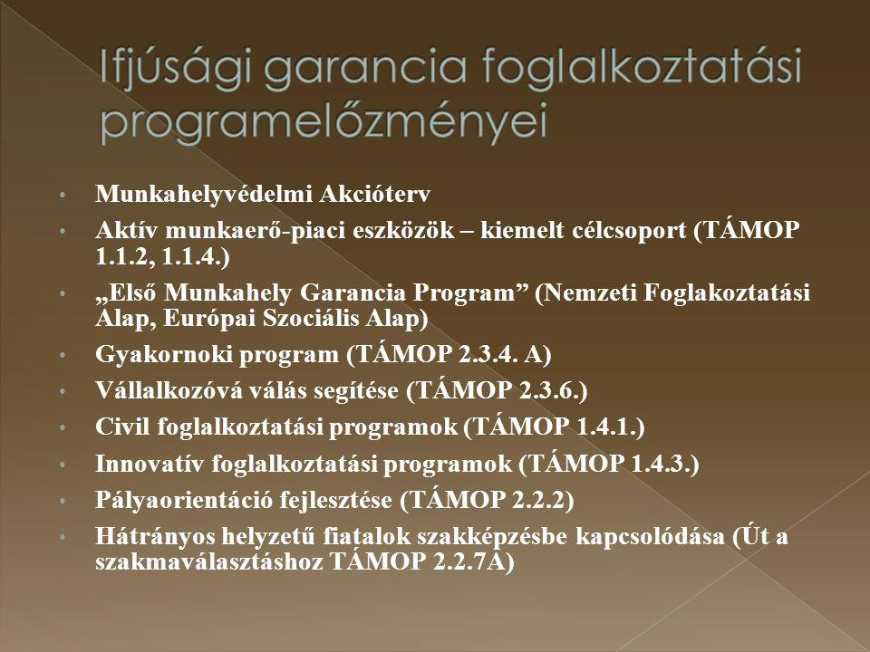 """Munkahelyvédelmi Akcióterv Aktív munkaerő-piaci eszközök – kiemelt célcsoport (TÁMOP 1.1.2, 1.1.4.) """"Első Munkahely Garancia Program"""" (Nemzeti Foglako"""