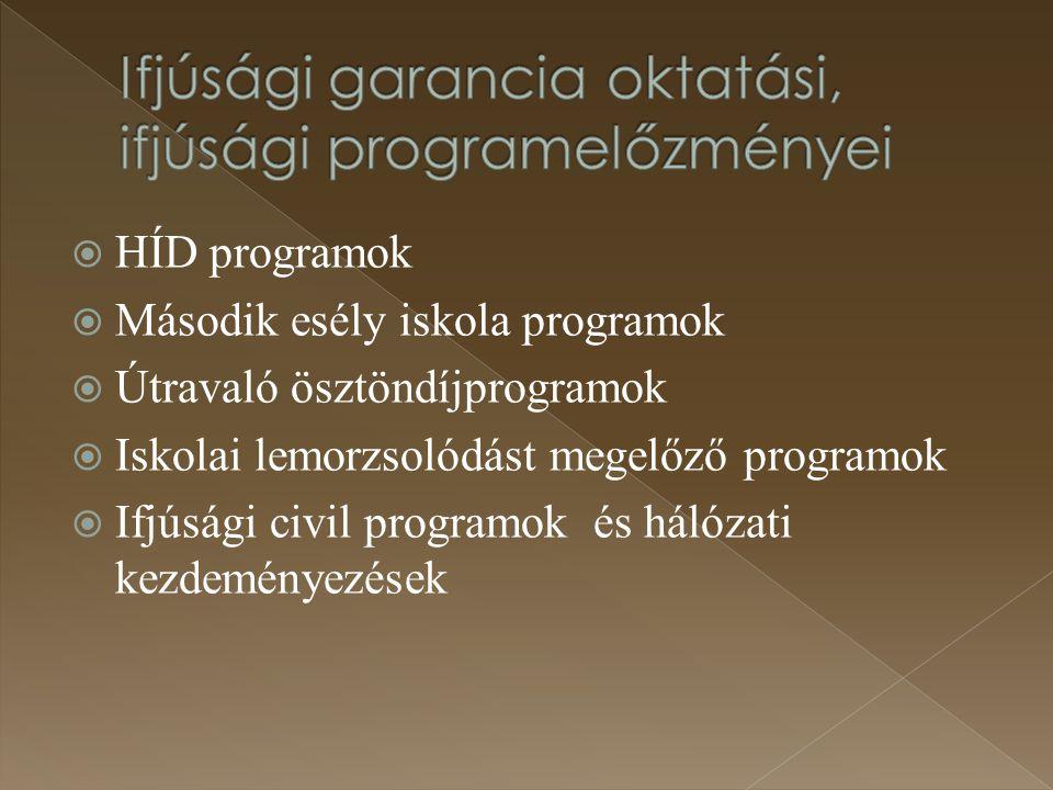  HÍD programok  Második esély iskola programok  Útravaló ösztöndíjprogramok  Iskolai lemorzsolódást megelőző programok  Ifjúsági civil programok